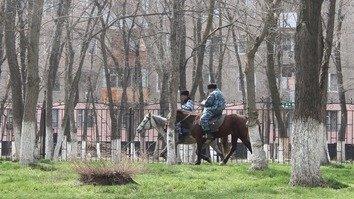 В Караганде борьбу с экстремизмом будут вести при помощи программы 'Доверие населения'