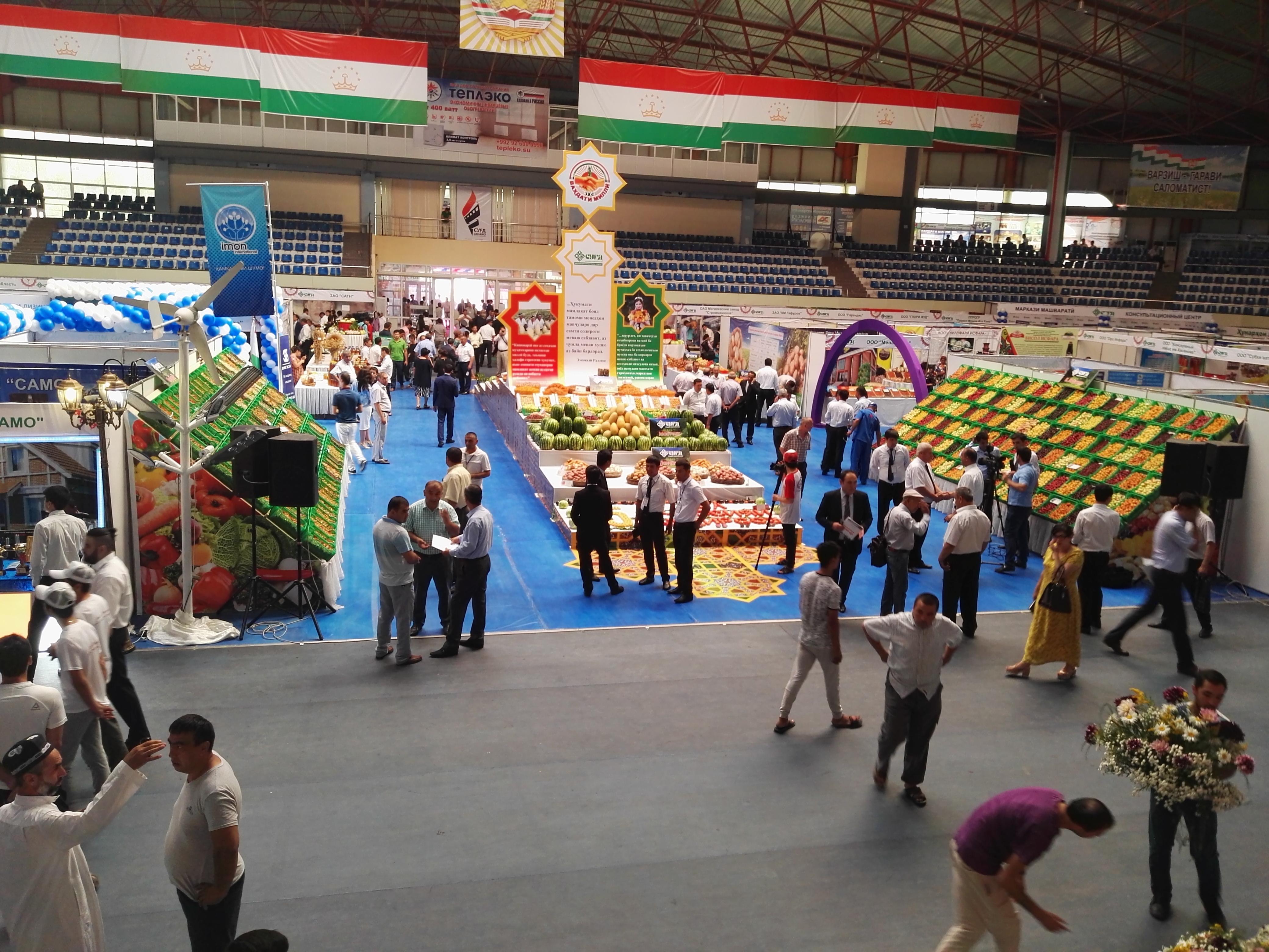 Наблюдатели: растет интерес к сотрудничеству с таджикскими компаниями