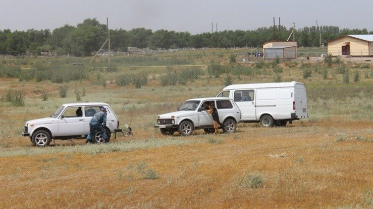 Service dogs look for drugs during Operation Poppy in Zhambyl Province June 15. [Zhambyl Province Police]