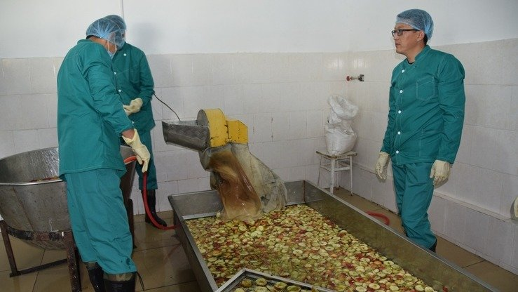 Workers process fruit in Uzgen in October. Farmers from Osh Province now can sell their produce to two processing plants and a cold storage facility set up with the help of the US Agency for International Development (USAID). [USAID Kyrgyz Republic]