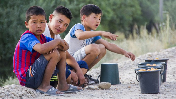 During summer holidays, schoolchildren in Batken Province, Kyrgyzstan, make pocket money by selling apricots to passing truck drivers. [World Bank Group]