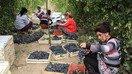 Узбекистан запланировал развитие виноделия
